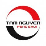 CÔNG TY TNHH KIẾN TRÚC PHONG THỦY TAM NGUYÊN Logo